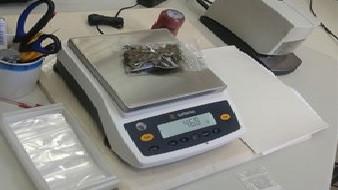 Policía y Guardia Civil decomisan 25.500 kilos de drogas, un 42% más que el año pasado