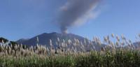Indonesia cierra el aeropuerto de Bali por la erupción del volcán Rinjani