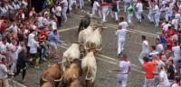 Los toros del Tajo y la Reina debutan con un encierro vertiginoso