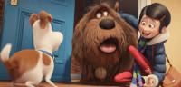 'Mascotas' se convierte en el mejor estreno del año en España