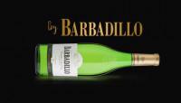 Bodegas Barbadillo inicia su vendimia