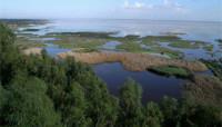 La Unesco debate sobre Doñana, el dragado y Aznalcollar