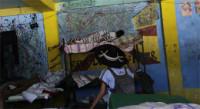 Cambiar sexo por comida era frecuente en el albergue mexicano La Gran Familia