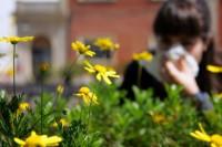 La primavera deja niveles de polen que no se alcanzaban desde hace años