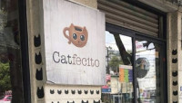 ¿Quién iba a decirle al gato Gazzu, que iba a dar nombre a una cafetería?