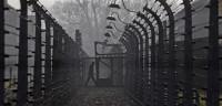 Acusado un médico de Auschwitz por más de 3.600 muertes