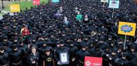 542 personas se visten de Batman para entrar en Guinness