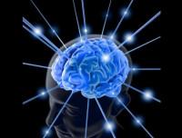 Las neurociencias optimizan ambientes creativos de trabajo