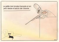 El crimen de la gata Inés, en Alfafar (Valencia) dispara las protestas animalistas