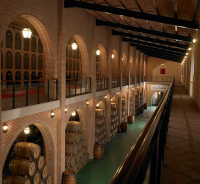 Los acreditados vinos del Grupo Yllera