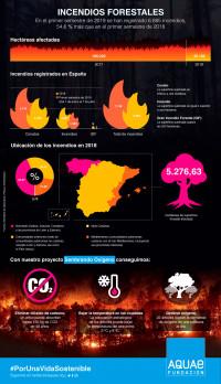 Más de 10.000 árboles plantados para combatir la pérdida de masa forestal provocada por los incendios