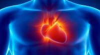Fundación Española del Corazón afirma que el 80 % de enfermedades cardiovasculares pueden prevenirse