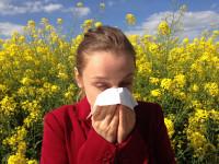 Los pediatras alergólogos advierten del riesgo de reacciones alérgicas en verano