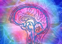 Cada cinco minutos una nueva persona es diagnosticada de esclerosis múltiple en el mundo