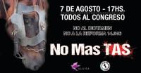 Histórica manifestación en Argentina por los animales