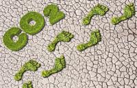 Geoinnova forma a las empresas para mejorar el medio  ambiente de forma sustentable