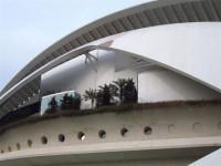 La Generalitat Valenciana retirará el trencadís de Les Arts y estudia demandar a Calatrava