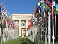 La ONU solo ha recibido el 43% de los 22.000 millones de dólares que pidió para 2016