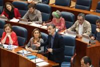 Podemos ratifica el cese de su portavoz en la Asamblea de Madrid
