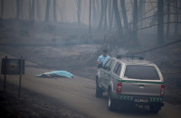 Aumenta a 62 el número de fallecidos por el incendio forestal de Leiria
