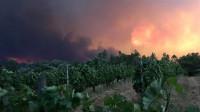 Al menos 43 muertos en un incendio forestal en Portugal