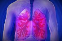 Entre dos y tres niños por aula sufren asma