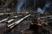 El presidente brasileño Bolsonaro culpa a los ambientalistas por los incendios en la Amazonia