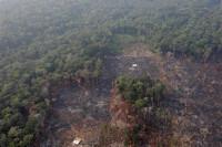 Naciones Unidas pide protección de la Amazonía mientras los bosques se queman a un ritmo sin precedentes