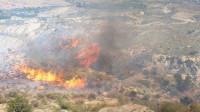 El Gobierno atribuye el descenso de los fuegos en 2020 a las condiciones meteorológicas y el confinamiento