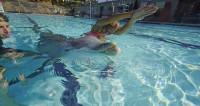 Crean un delfín robótico de gran realismo para sustituir a los de verdad en los acuarios marinos
