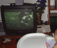 ¿Alguien sabe qué diablos aparece en esta tele?