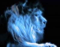 Sueña el león