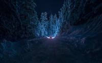 Covid-19, desde lo profundo del bosque: a la escucha de Rosa Mas