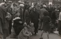 Los fondos de la Guerra Civil Española, los más consultados en la BNE