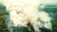 Estudio: crisis climática vinculada a aumento de riesgos durante el embarazo