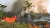 Incendios en la Amazonia brasileña alcanzan su nivel más alto en 13 años