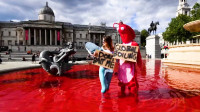 Activistas por los derechos de los animales en el Reino Unido exigen una dieta a base de vegetales para prevenir futuras pandemias