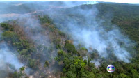 Incendios forestales en la Amazonia desatan temor por desastre ambiental