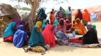 Más de dos millones de somalíes en riesgo de morir de inanición
