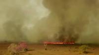 La crisis climática provoca incendios récord en Brasil y en el oeste de Estados Unidos