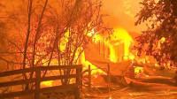 Miles de personas huyen al océano para escapar de los incendios forestales de Australia