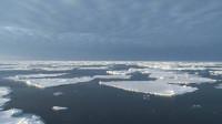 2019 fue el año más caluroso para los océanos del mundo desde que existen registros
