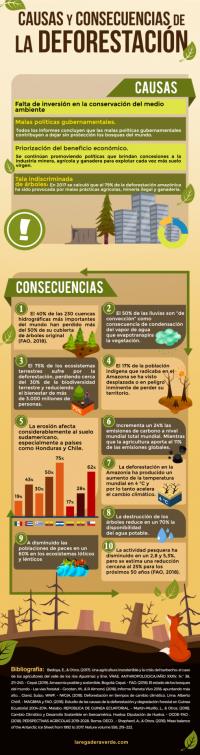 INFOGRAFÍA: Causas y consecuencias de la deforestación