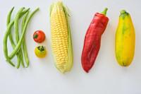 Cinco deficiencias que pueden afectar a la salud en la dieta vegetariana