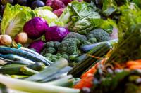8 de cada 10 hogares españoles desperdicia comida a pesar de la crisis