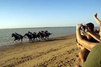173 veranos galopando en las playas de Sanlúcar de Barrameda