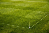 Guía básica para iniciarte en las apuestas de fútbol