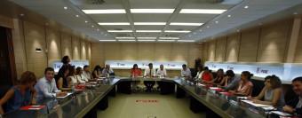 Los críticos dicen que la Comisión de Garantías analizará su disolución